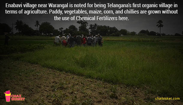 warangal_2