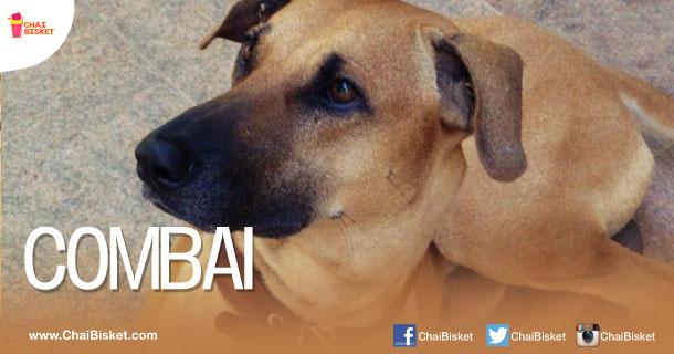 Tamil Girl Dog Names