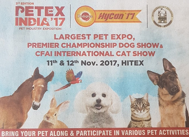Dog Show In Hitex