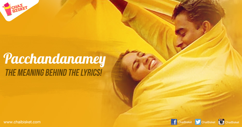 The Meaning Lyrics Of 'Pacchandanamey' Song From Sakhi Movie Show ...